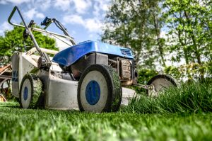 Kosznenie trawy