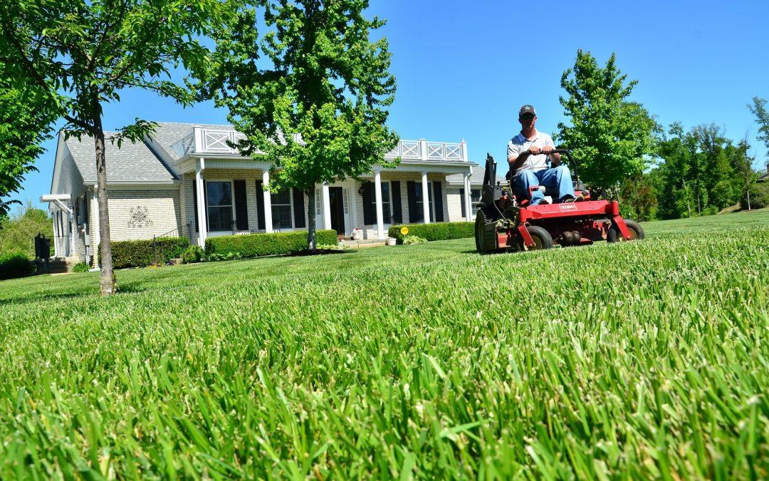 Wymiana kosiarki na traktor ogrodowy – czy warto?